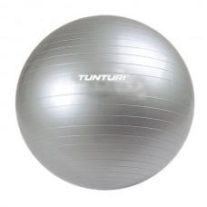 Гимнастический мяч Tunturi (TUSFU026)