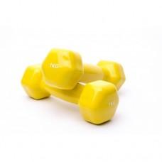 Гантели для фитнеса Alex VDD-01-1к